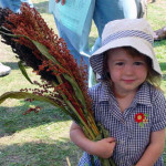 Broomcorn Girl