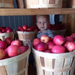 Snappy Apple Farm Market Photo